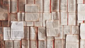 レビュー論文やメタ分析論文とは?論文の調べ方も紹介します