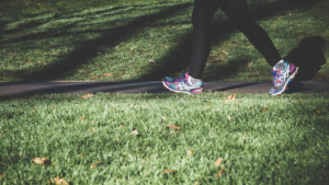 【衝撃】散歩するだけでマインドフルネスになることが判明!【散歩瞑想とは】